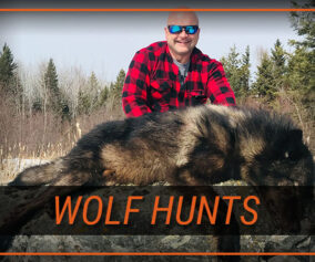 Ontario Hunting Guide & Outfitter
